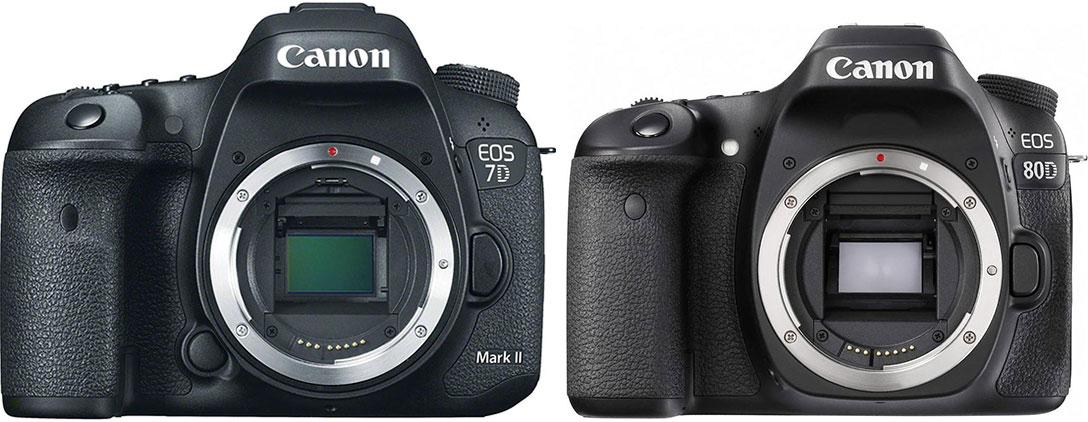 Canon EOS 7D mkII vs Canon EOS 80D - davemclelland com